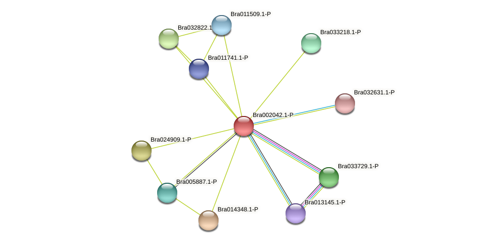 Bra002042 protein (Brassica rapa) - STRING interaction network
