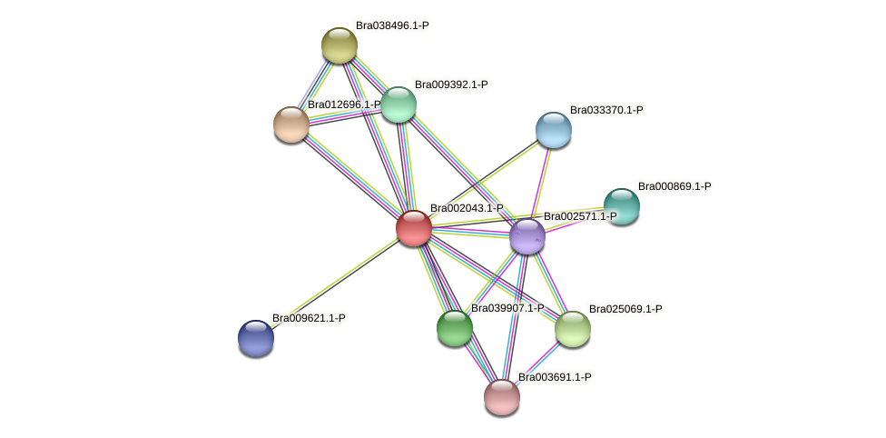 Bra002043 protein (Brassica rapa) - STRING interaction network