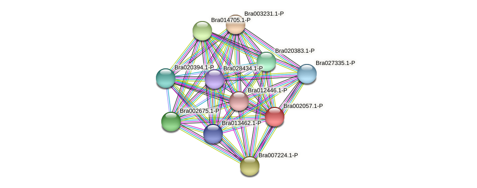 Bra002057 protein (Brassica rapa) - STRING interaction network