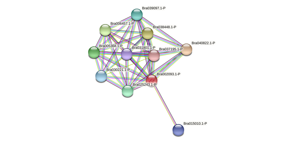 Bra002093 protein (Brassica rapa) - STRING interaction network