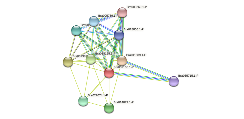 Bra002105 protein (Brassica rapa) - STRING interaction network
