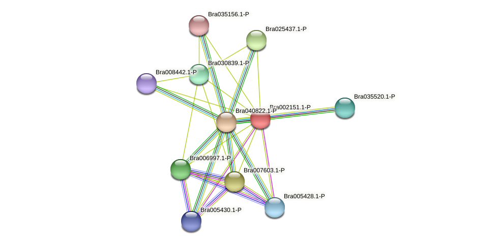 Bra002151 protein (Brassica rapa) - STRING interaction network