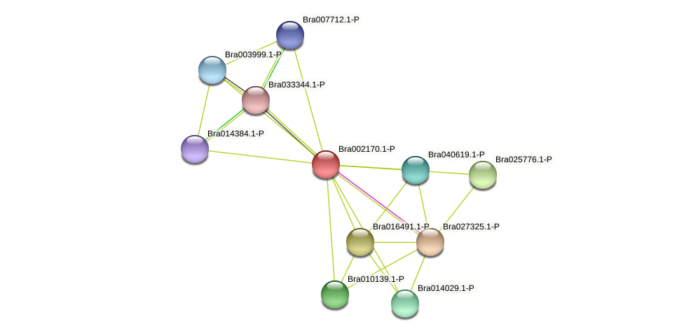 Bra002170 protein (Brassica rapa) - STRING interaction network