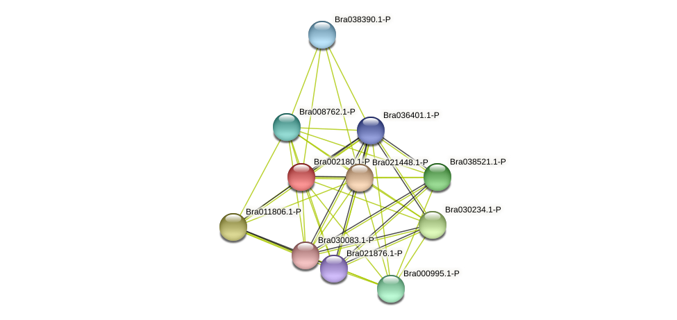 Bra002180 protein (Brassica rapa) - STRING interaction network