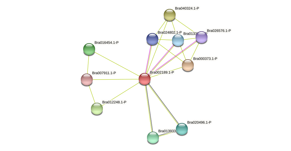 Bra002189 protein (Brassica rapa) - STRING interaction network