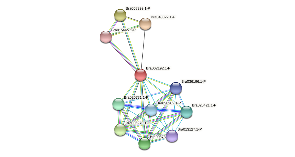 Bra002192 protein (Brassica rapa) - STRING interaction network