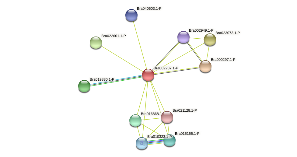 Bra002207 protein (Brassica rapa) - STRING interaction network