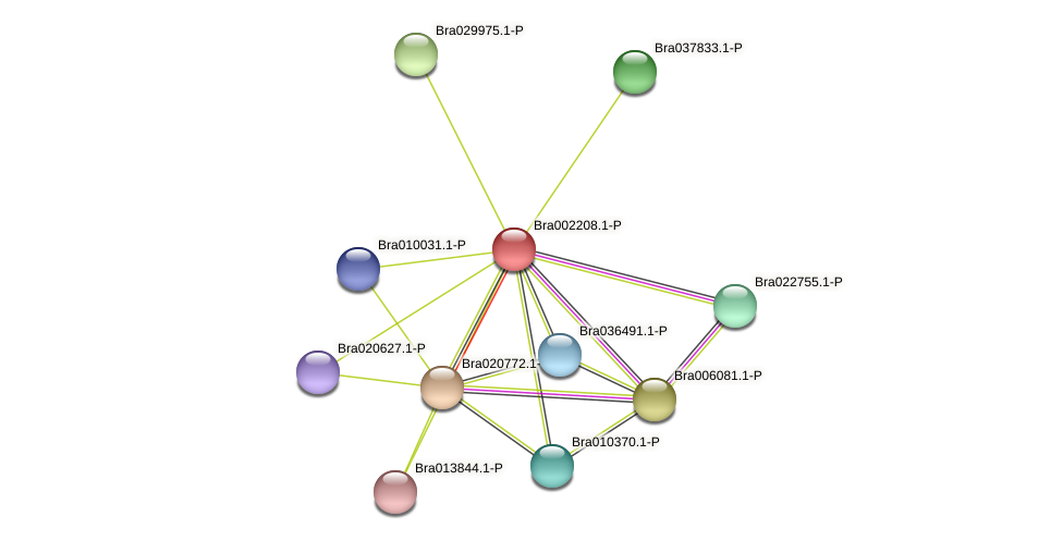 Bra002208 protein (Brassica rapa) - STRING interaction network