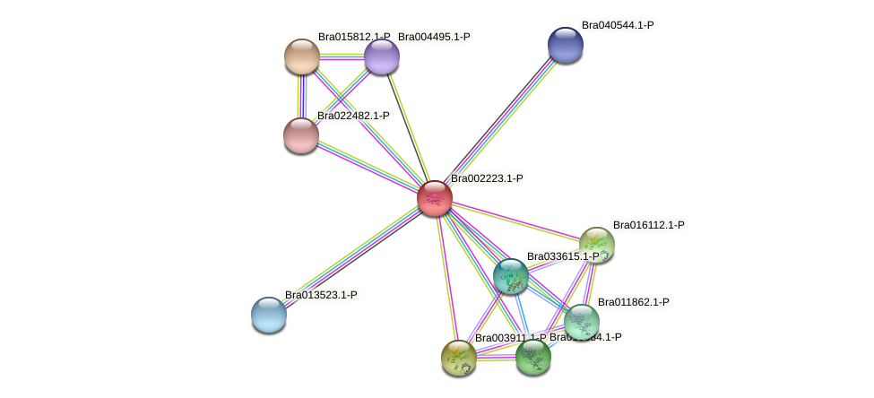 Bra002223 protein (Brassica rapa) - STRING interaction network