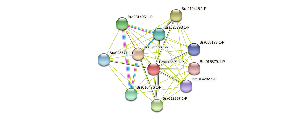 Bra002235 protein (Brassica rapa) - STRING interaction network
