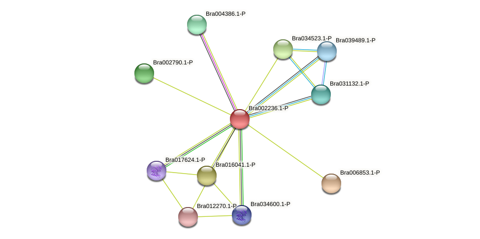 Bra002236 protein (Brassica rapa) - STRING interaction network