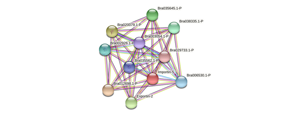 Bra002263 protein (Brassica rapa) - STRING interaction network