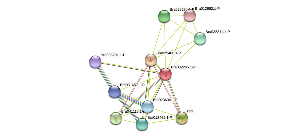 Bra002265 protein (Brassica rapa) - STRING interaction network