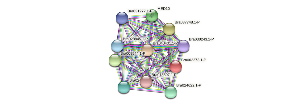 Bra002273 protein (Brassica rapa) - STRING interaction network