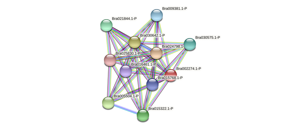 Bra002274 protein (Brassica rapa) - STRING interaction network