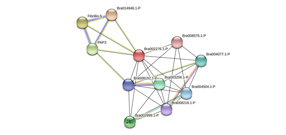 Bra002276 protein (Brassica rapa) - STRING interaction network