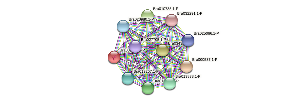 Bra002279 protein (Brassica rapa) - STRING interaction network