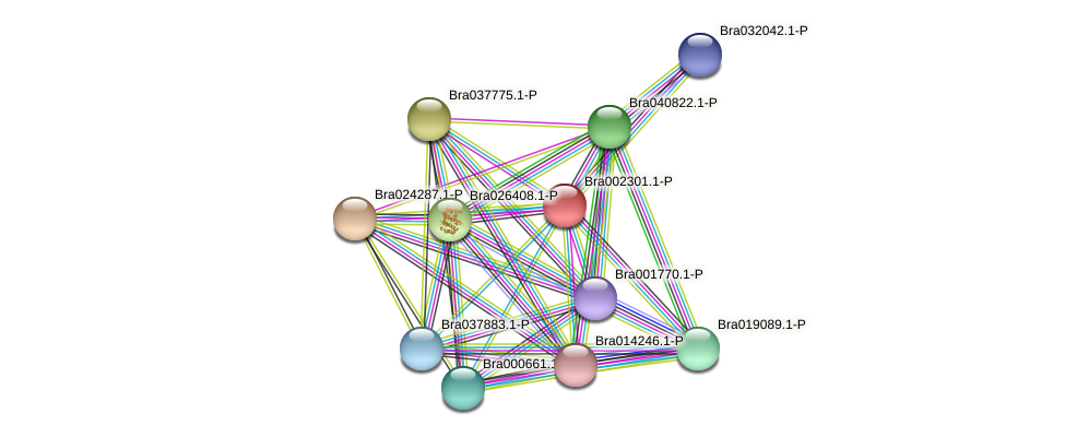 Bra002301 protein (Brassica rapa) - STRING interaction network