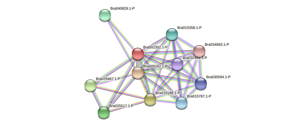 Bra002302 protein (Brassica rapa) - STRING interaction network