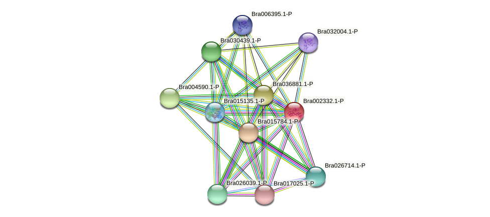 Bra002332 protein (Brassica rapa) - STRING interaction network