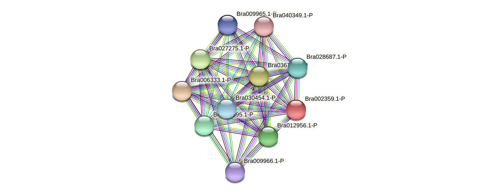 Bra002359 protein (Brassica rapa) - STRING interaction network