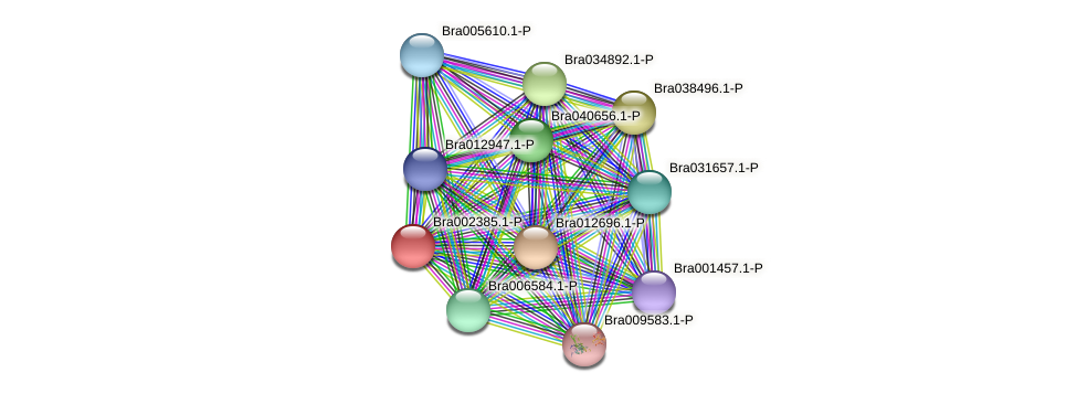 Bra002385 protein (Brassica rapa) - STRING interaction network