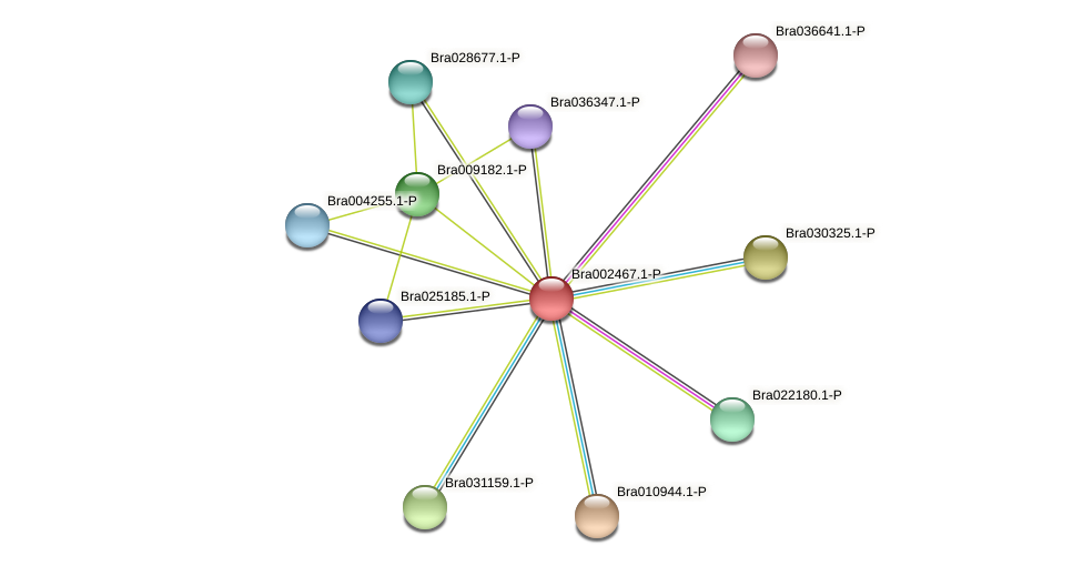 Bra002467 protein (Brassica rapa) - STRING interaction network