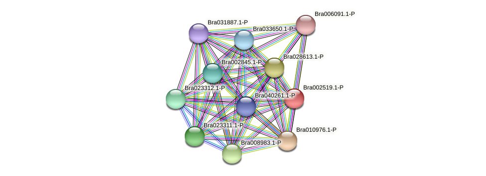 Bra002519 protein (Brassica rapa) - STRING interaction network
