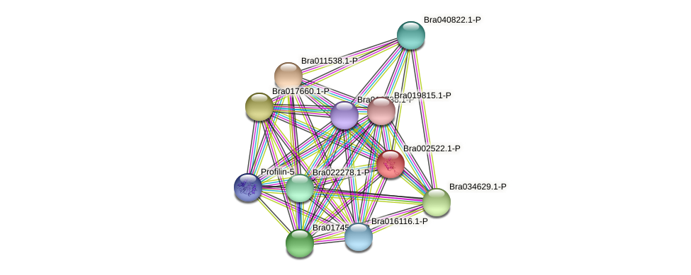 Bra002522 protein (Brassica rapa) - STRING interaction network