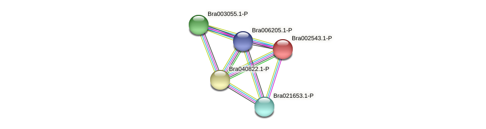 Bra002543 protein (Brassica rapa) - STRING interaction network