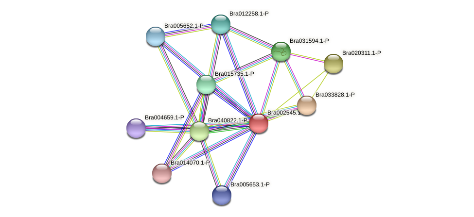 Bra002545 protein (Brassica rapa) - STRING interaction network