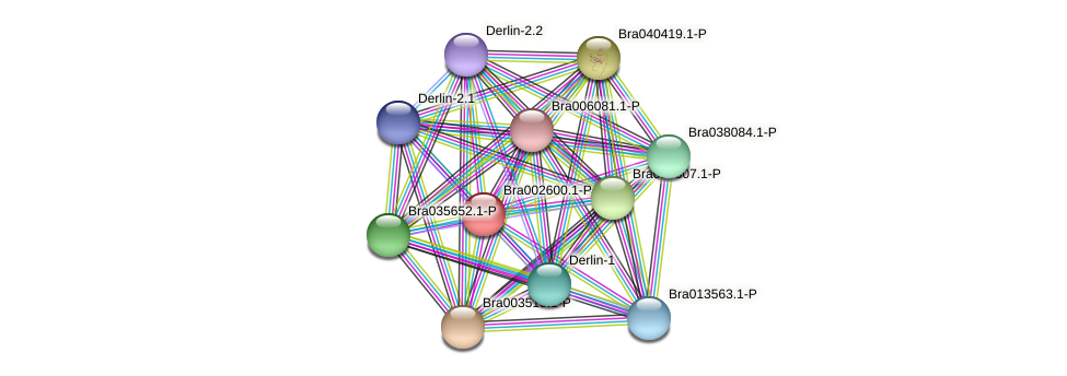 Bra002600 protein (Brassica rapa) - STRING interaction network