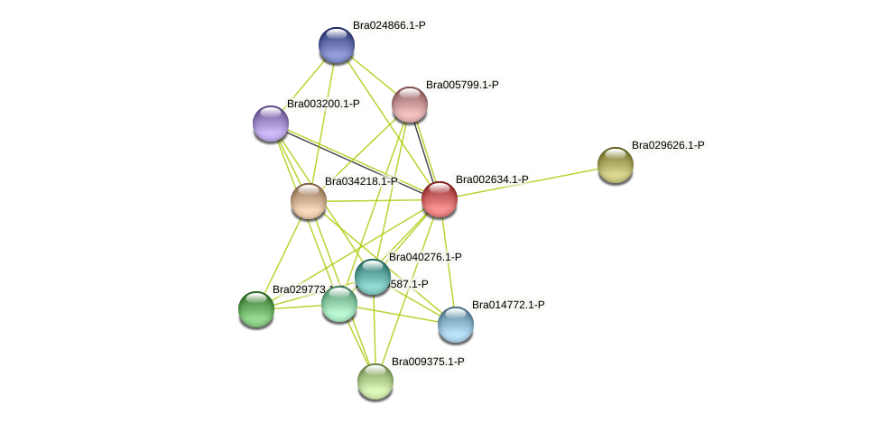 Bra002634 protein (Brassica rapa) - STRING interaction network