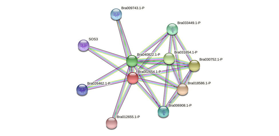 Bra002654 protein (Brassica rapa) - STRING interaction network