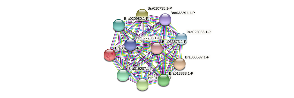 Bra002662 protein (Brassica rapa) - STRING interaction network