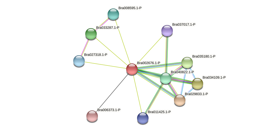 Bra002676 protein (Brassica rapa) - STRING interaction network