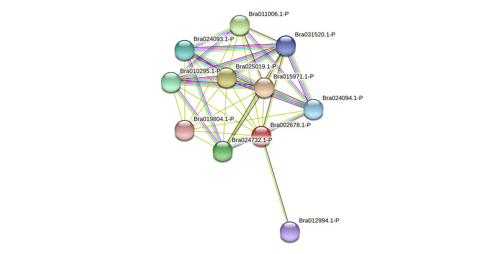 Bra002678 protein (Brassica rapa) - STRING interaction network