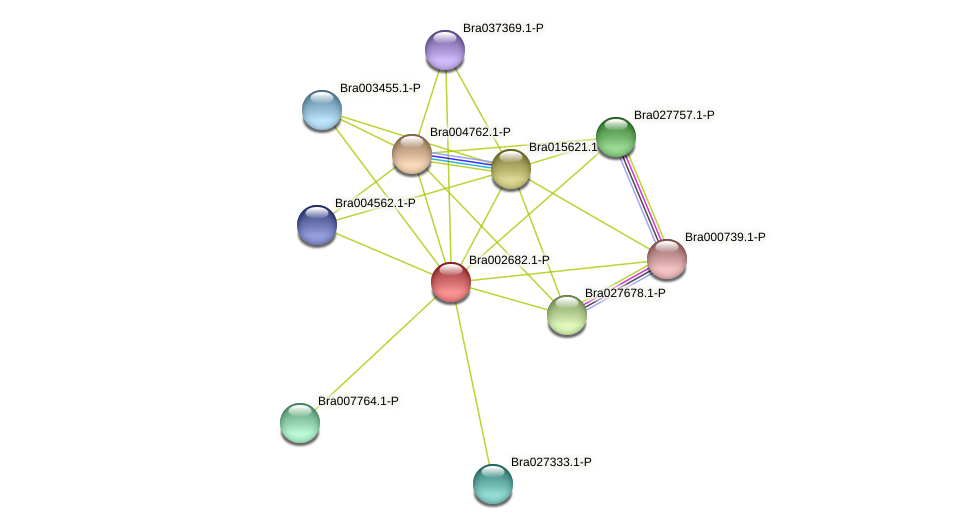 Bra002682 protein (Brassica rapa) - STRING interaction network
