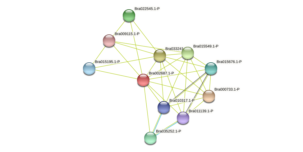 Bra002687 protein (Brassica rapa) - STRING interaction network