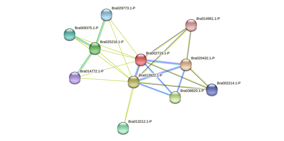Bra002719 protein (Brassica rapa) - STRING interaction network