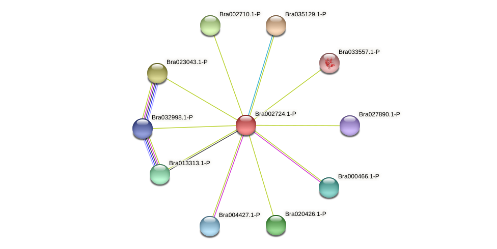 Bra002724 protein (Brassica rapa) - STRING interaction network