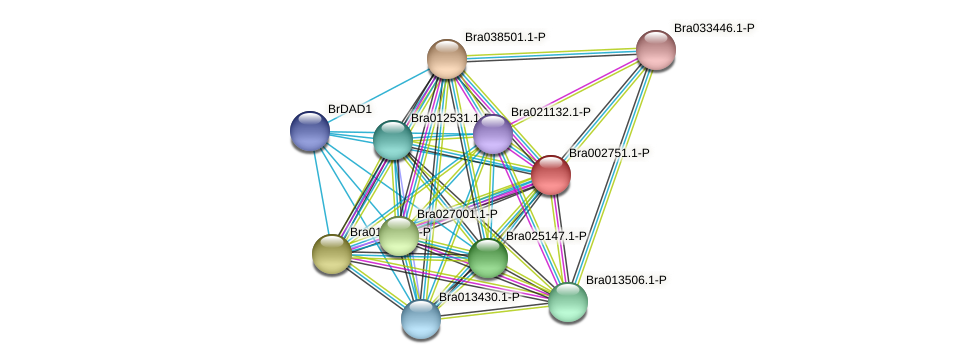 Bra002751 protein (Brassica rapa) - STRING interaction network