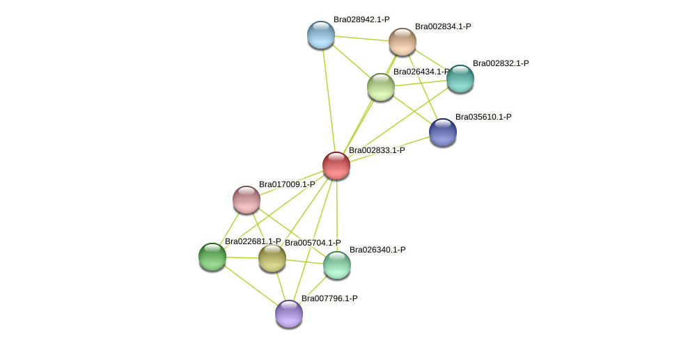Bra002833 protein (Brassica rapa) - STRING interaction network