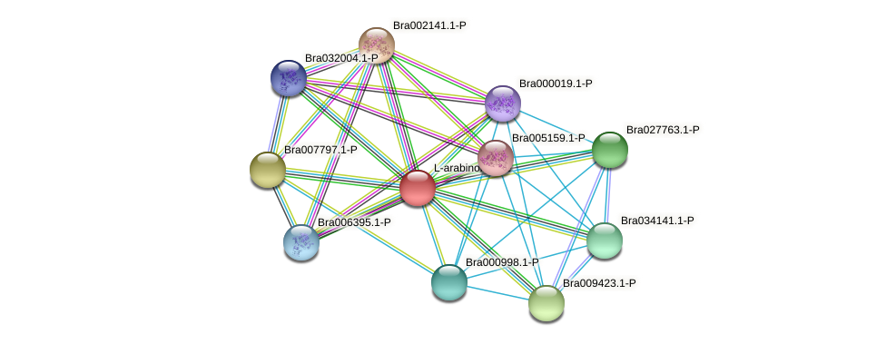 Bra002849 protein (Brassica rapa) - STRING interaction network