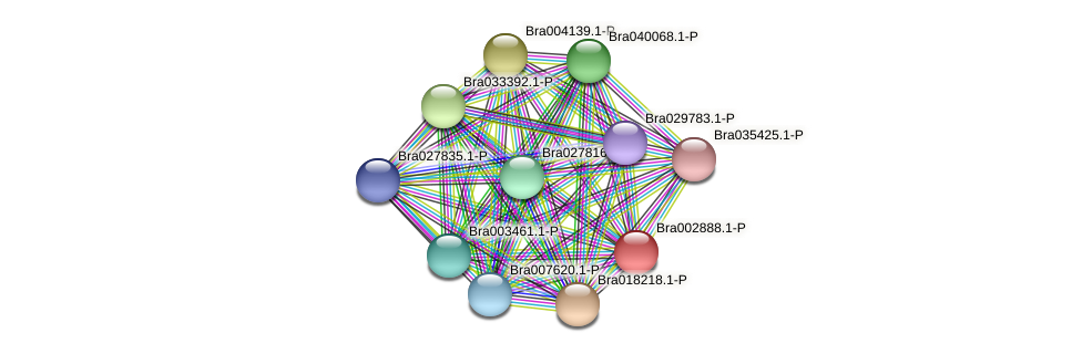 Bra002888 protein (Brassica rapa) - STRING interaction network