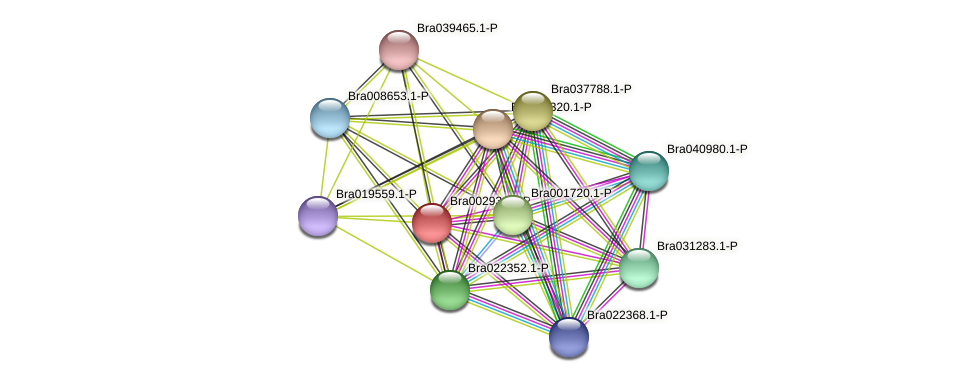 Bra002931 protein (Brassica rapa) - STRING interaction network