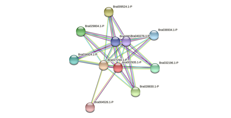Bra002935 protein (Brassica rapa) - STRING interaction network