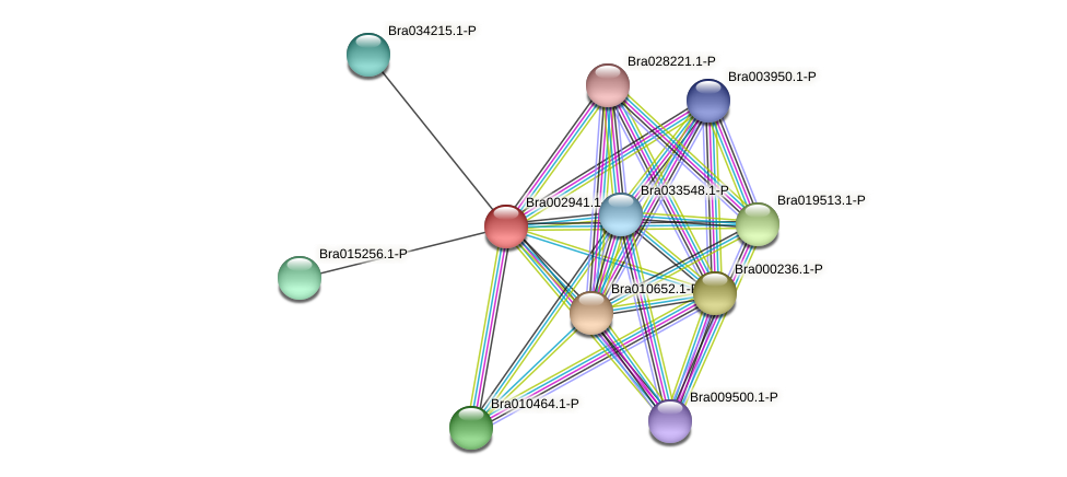 Bra002941 protein (Brassica rapa) - STRING interaction network