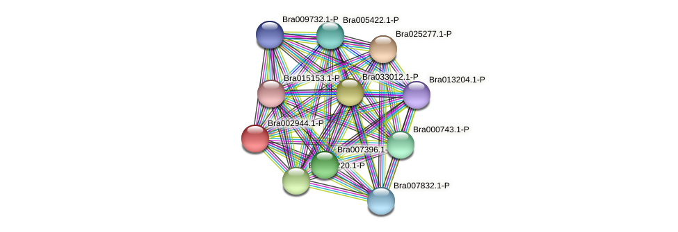 Bra002944 protein (Brassica rapa) - STRING interaction network
