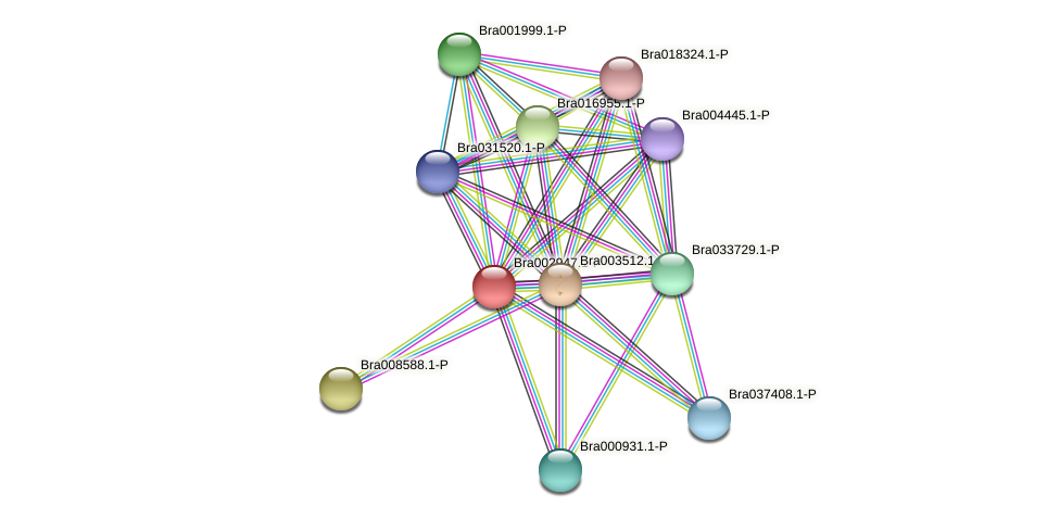 Bra002947 protein (Brassica rapa) - STRING interaction network